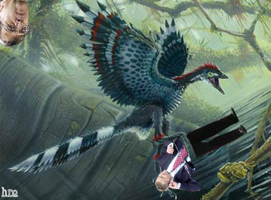 musbiearchaeopteryxrescue