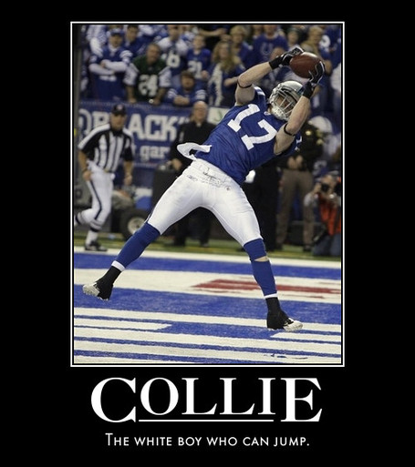 Collieposter_medium