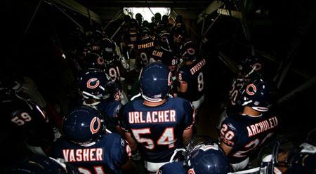 Bears-tunnel_medium