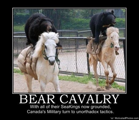 633504767147376904-bear-cavalry_medium