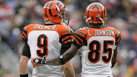 Nfl_g_palmer_ochocinco_576_medium
