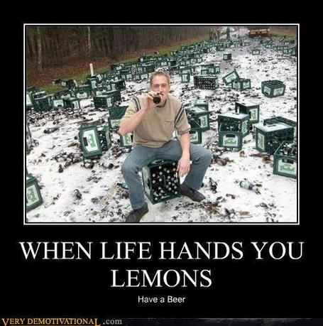 Demotivational-posters-when-life-hands-you-lemons_medium