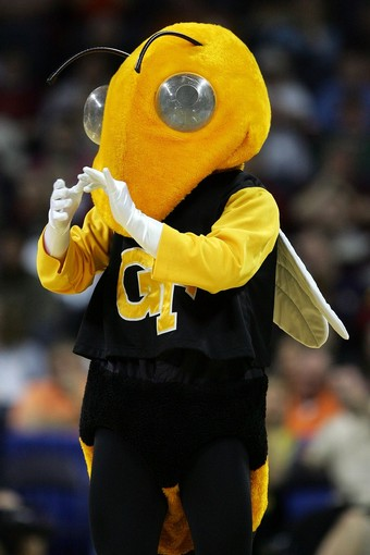 Georgia-tech-yellow-jacket-buzz_medium