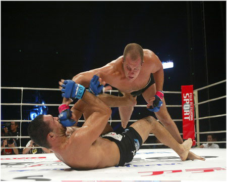 Fedor_nogueira_fight_medium