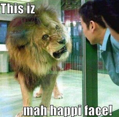 Lion_happy_face_growl_zoo_visitor_funny_humor_cool_haha_lol_rofl_smiles_medium