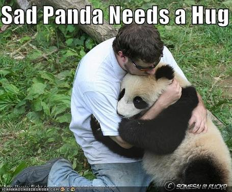 Sad-panda-podiatrist_medium