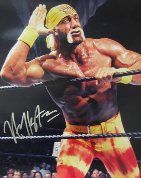 Hulk-hogan_medium