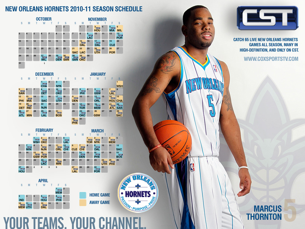 Csthornets2010wallpaper_mtver_1024x768_medium