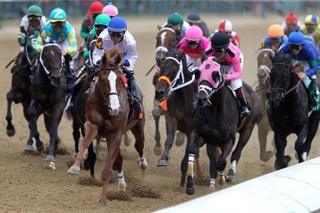 preakness stakes 2011. Preakness Stakes 2011: