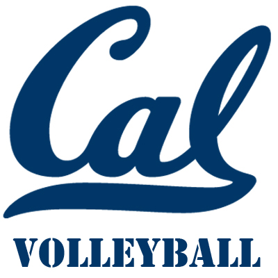 Twitlogo_volleyball_bigger_medium
