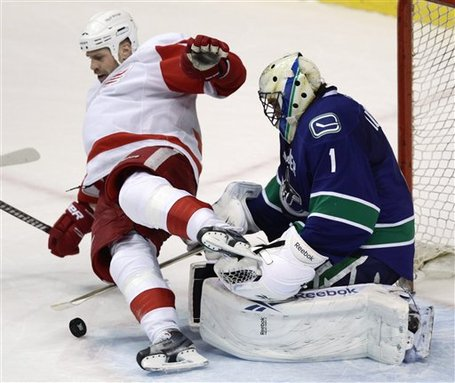 73253_red_wings_canucks_hockey_medium