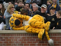 http://cdn1.sbnation.com/imported_assets/837501/university-of-missouri-traditions-mascot-truman-cat-nap-mu-t-m-00026md.jpg