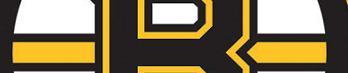 Bruins_jpg_medium