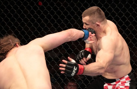 09_crocop_nelson_05_medium