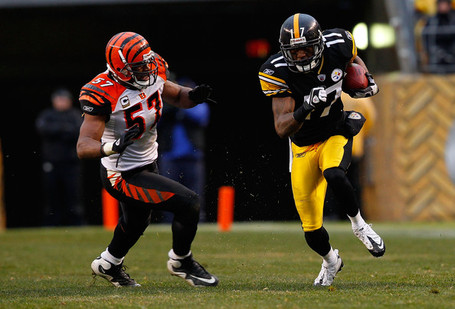 Dhani_jones_cincinnati_bengals_v_pittsburgh_iv413h4oei4l_medium