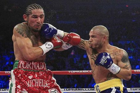 Cotto-margarito-2a_s620x413_medium