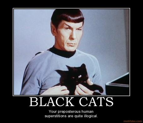 Black-cats-cats-spock-star-trek-superstition-demotivational-poster-1274151429_medium