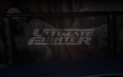 The-ultimate-fighter-logo-400x249_medium