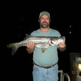 Fort_pierce_snook