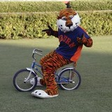 Aubie_bike