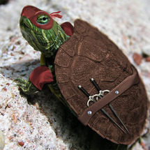 Ninja-turtle-in-real-life