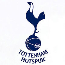 Grow-your-own-tottenham-hotspur-pitch-4