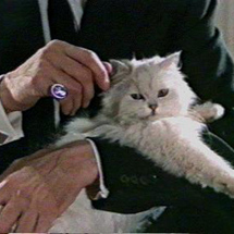 Blofeld