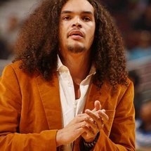 Joakim-noah-hair-down