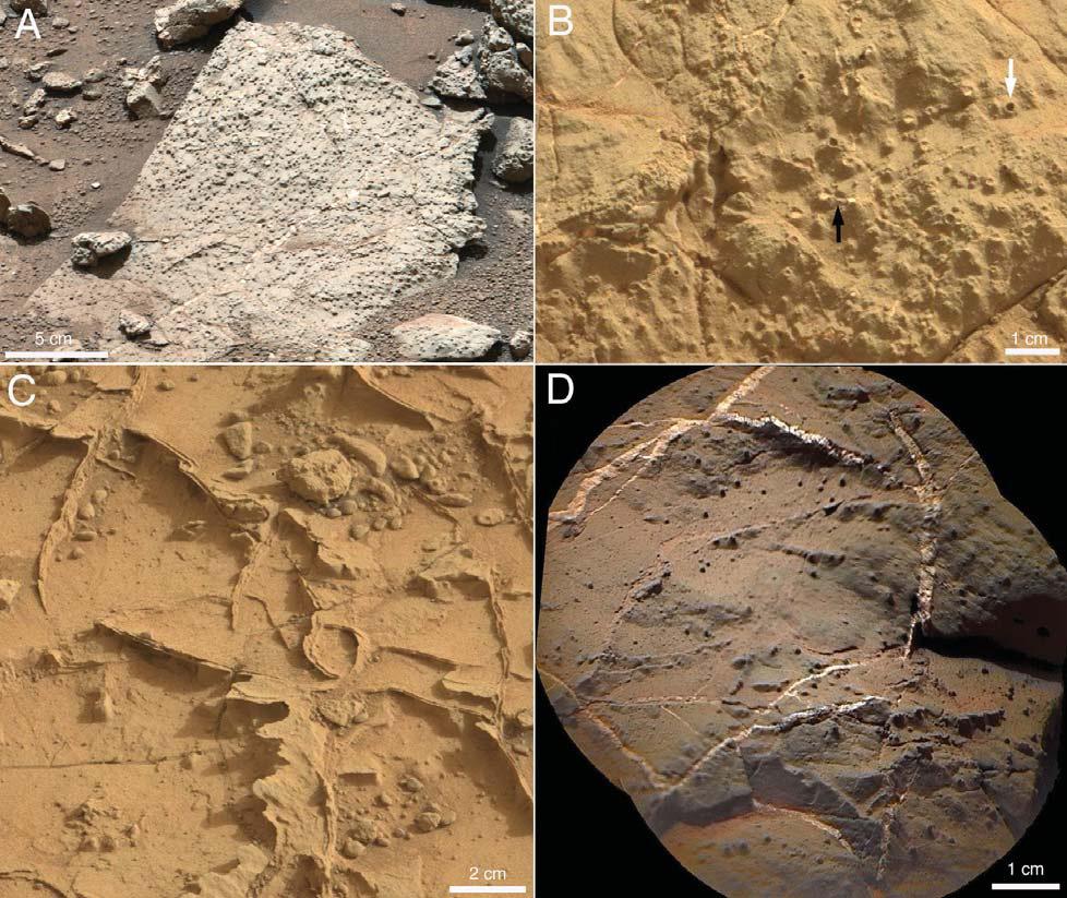 mars curiosity unexplained - photo #8