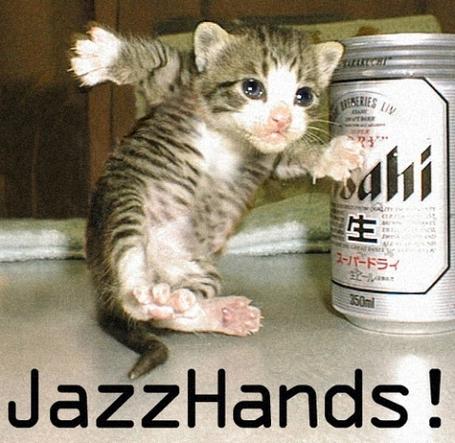 爵士乐handscat2_medium