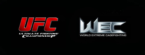 Dana White: WEC 'isn't going a...